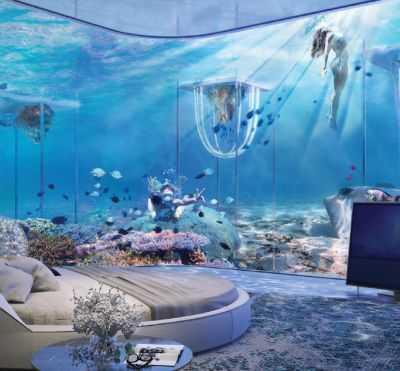 جناج تحت الماء في جزيرة فينيسيا